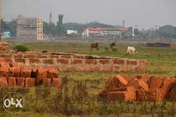 Residential Plot for Sale in Trisulia, Cuttack
