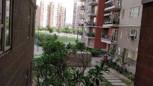 Apartment flat for Sale