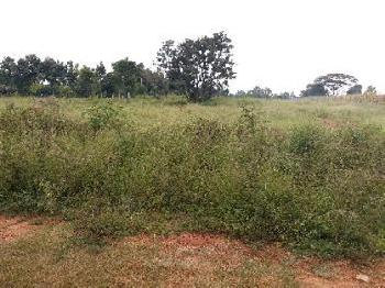 Commercial Lands /Inst. Land for Sale in Hoskote, Bangalore