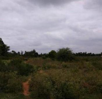 Industrial Land / Plot for Sale in Whitefield, Bangalore