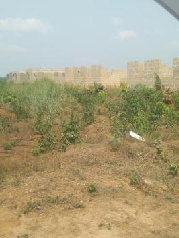 Residential Plot for Sale in Chikka Tirupathi, Bangalore