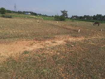 Plot in Super Built-up Area