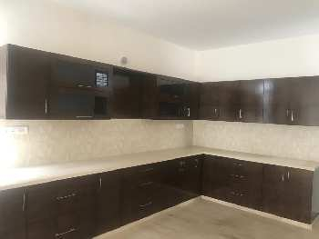 Duplex House for Rent