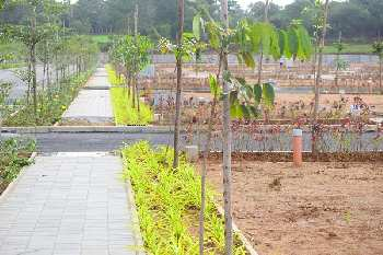 RESIDENTIAL GATED COMMUNITY PLOT IN KNS NEOLIVA KENGERI