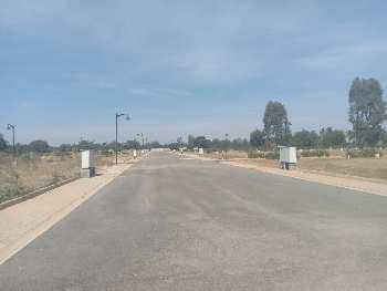 1200 Sq.ft. Residential Plot for Sale in Devanahalli, Bangalore