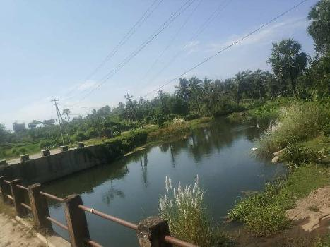 2 Acre Residential Plot for Sale in Walayar, Palakkad