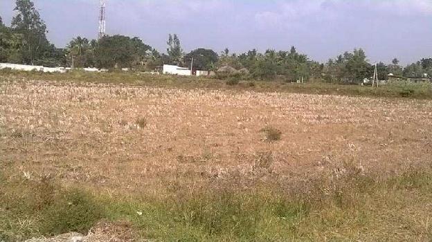 Commercial Lands /Inst. Land for Rent in Karad, Satara