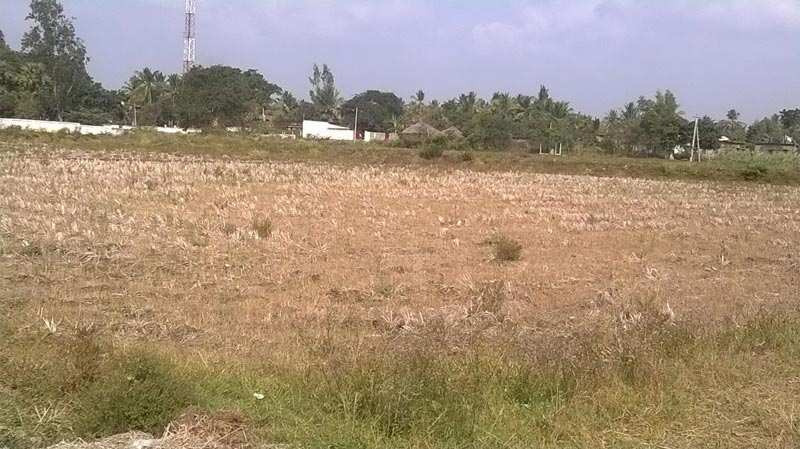 Commercial Lands /Inst. Land for Rent in Karad, Satara