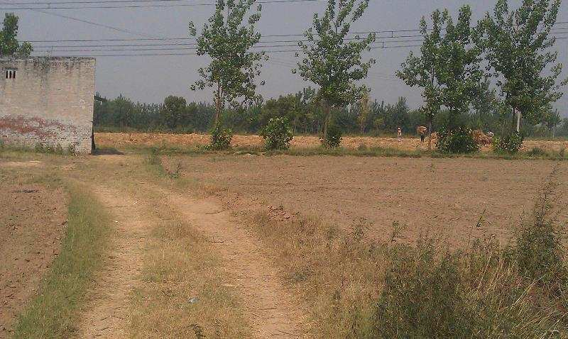 Residential Land for Sale in Nehrugram, Dehradun