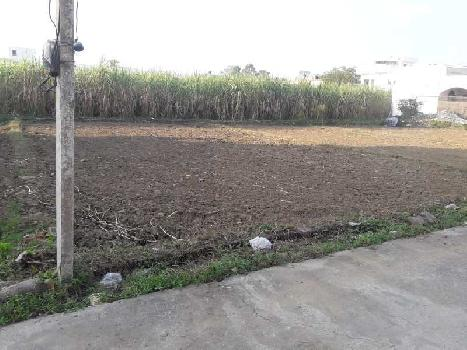 East Facing 250 Sq yard Residential Plot for Sale in Badripur Dehradun