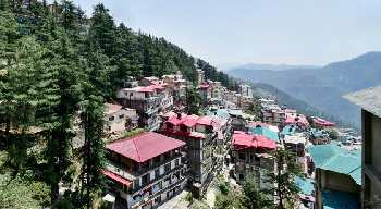 1 BHK Flats & Apartments for Sale in Vikasnagar, Shimla