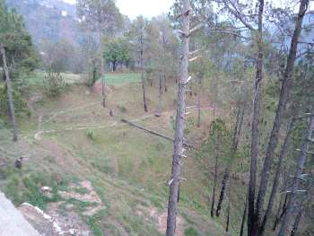 1 Bigha Residential Plot for Sale in New Shimla, Shimla