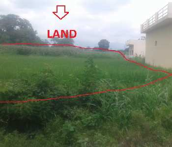 1 Bigha Agricultural/Farm Land for Sale in Paonta Sahib, Sirmaur