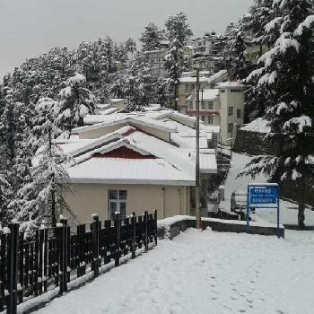 2 BHK Flats & Apartments for Sale in Kasumpti, Shimla
