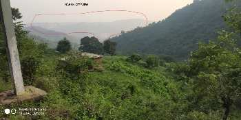 8 Biswa Commercial Lands /Inst. Land for Sale in Nahan, Sirmaur
