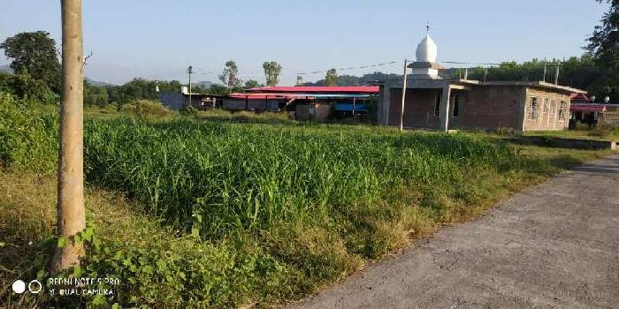 2 Bigha Agricultural/Farm Land for Sale in Paonta Sahib, Sirmaur