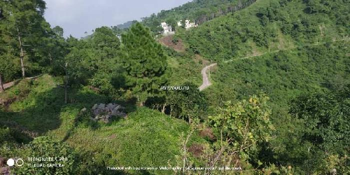 65 Biswa Commercial Lands /Inst. Land for Sale in Nahan, Sirmaur