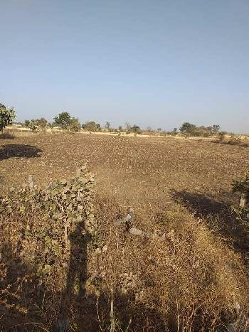Agricultural/Farm Land for Sale in Berasia, Bhopal