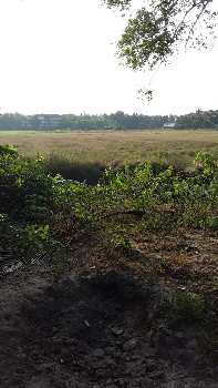 Field View Plot In a Scenic Village in South Goa