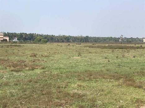 Field View Plot In Betalbatim