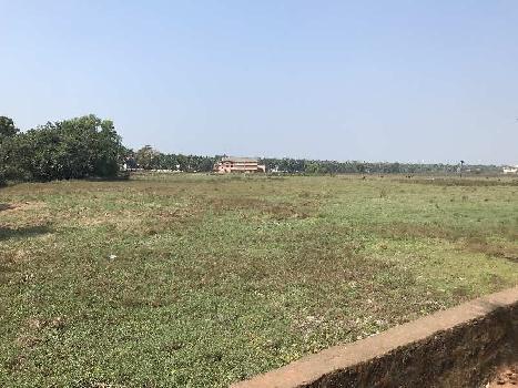 Field View Plot In Betalbatim