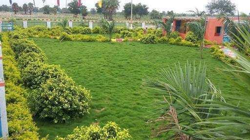 Open residential plots for sale@Yadagirigutta.