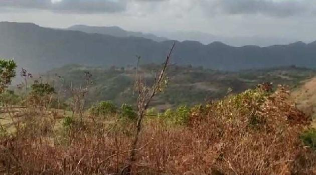 1 Acre Agricultural/Farm Land for Sale in Lavasa City, Pune
