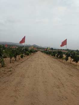 Farm House Plot For Sale In Rajasthan
