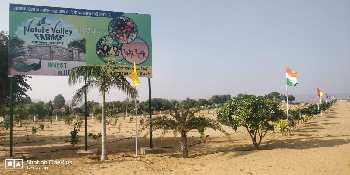 Farm House Land For Sale In Delhi's Nearest Mini Hill Station Khetri, Jhunjhunu, Rajasthan