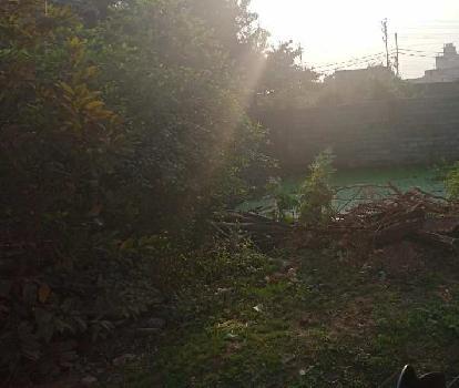 2500 Sq.ft. Residential Plot for Sale in Amlidih, Raipur