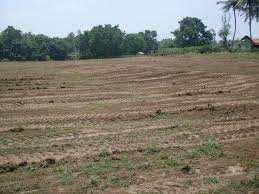 Residential Plot for Sale in Murlipura, Jaipur