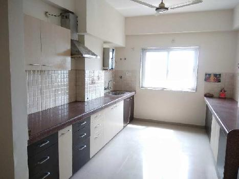 3 BHK Residential Apartment for Rent in Ashok Nagar apartment
