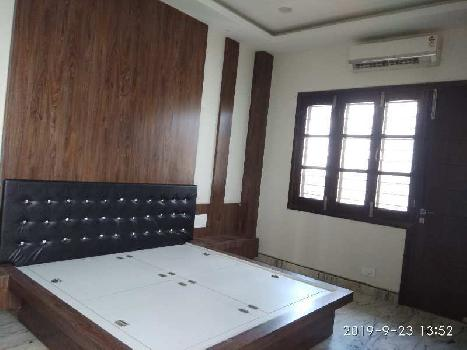 Well Furnished house for rent at Shobaghpura Udaipur