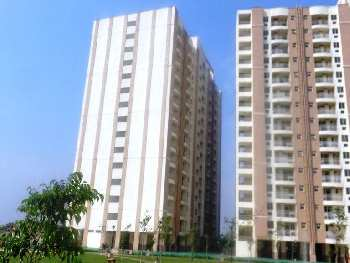 2 BH Apartment for Rent in Alwar Bypass Road,