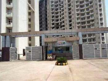 1 BHK Apartment for Rent in Alwar Bypass Road Bhiwadi