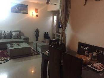 1 BHk Apartment for Sale in Sector - 1 Dharuhera