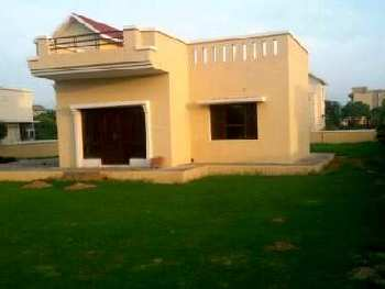 Land for Sale in Sector - 6 Dharuhera