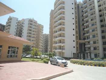 3 BHK Apartment For Rent in Bhiwadi