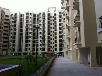 1bhk flat for sale in Cosmos greens