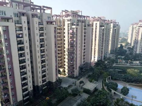Orchid Petals 3BHK Flat, Park Facing