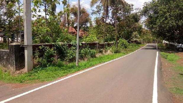 Residential Plot For Sale In Sancoale, Goa