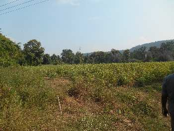 26 acres tar road touch irrigated agricultural land on lease