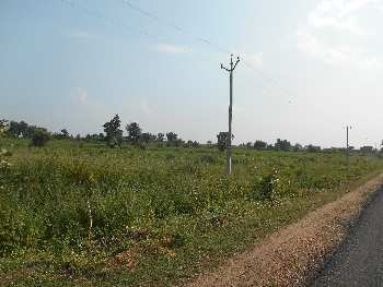 18 acres of tar road touch agricultural  land on lease