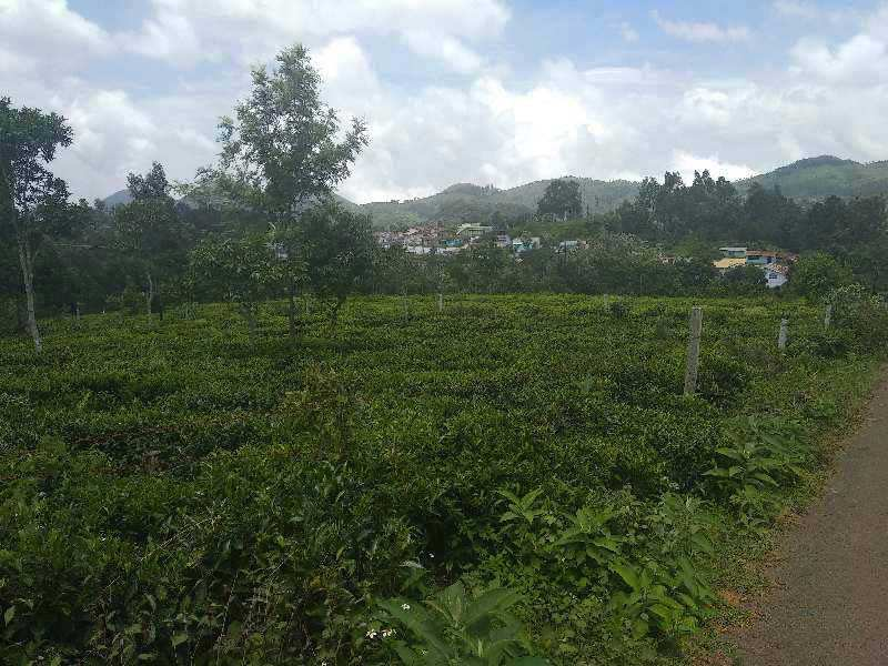 27 cents Plot for sale in coonoor