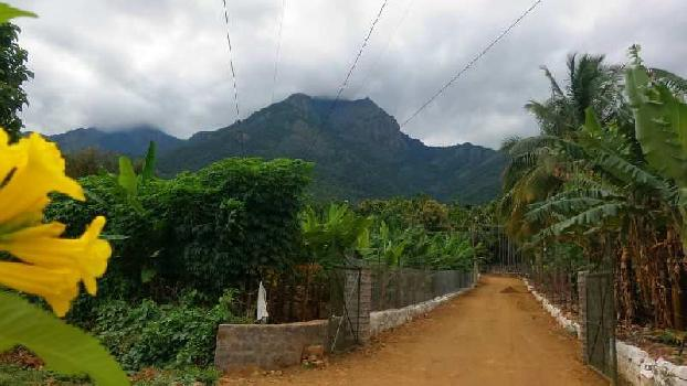 Farm land for sale in mettupalayam