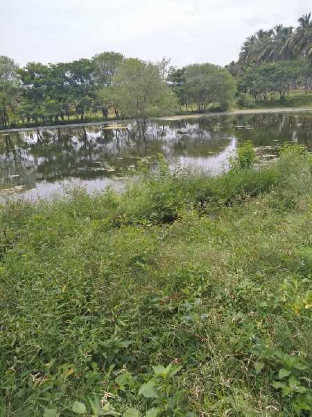 170 acre farm land for sale in anaimalai coimbatore