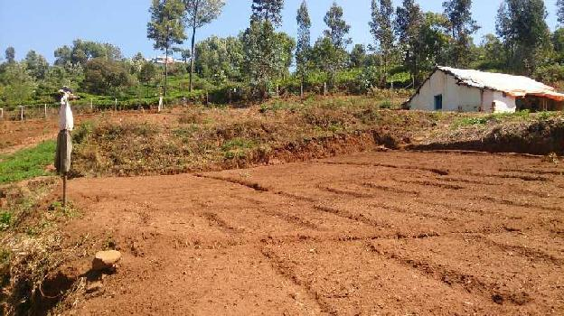 Farm land for sale in ketti, sogathorai