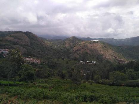 1.35 acres tea estate for sale in kotagiri