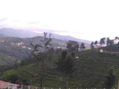 9 acres of tea estate for sale in kotagiri..