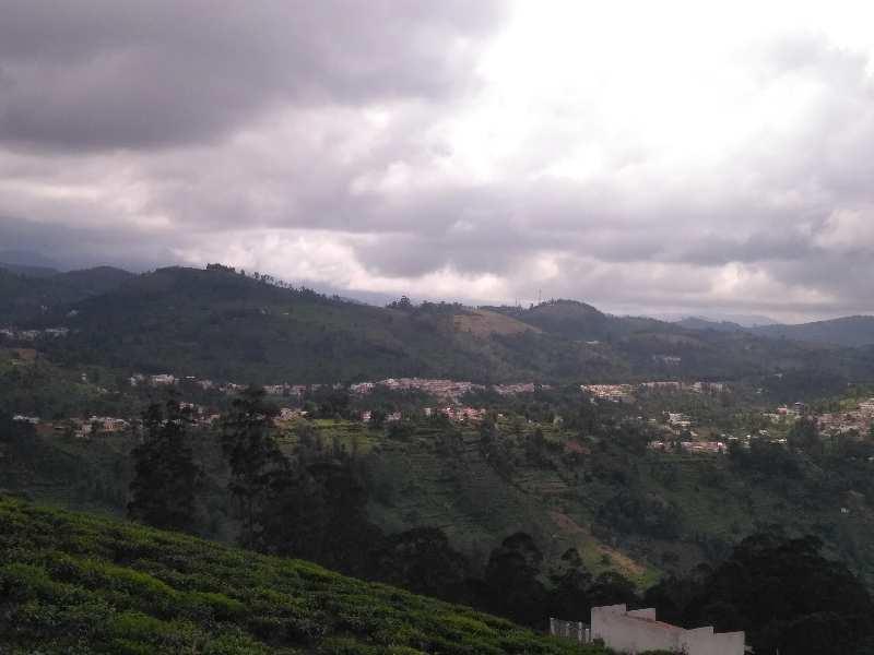 9 acres of tea estate for sale in kotagiri..